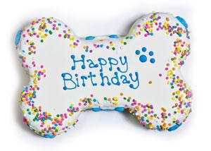 Happy 8års dag!